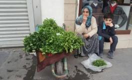 (Eastern Armenian) Նա երբեք չի դադարել հավատալ, որ մի օր Սուր գավառում լիություն կլինի